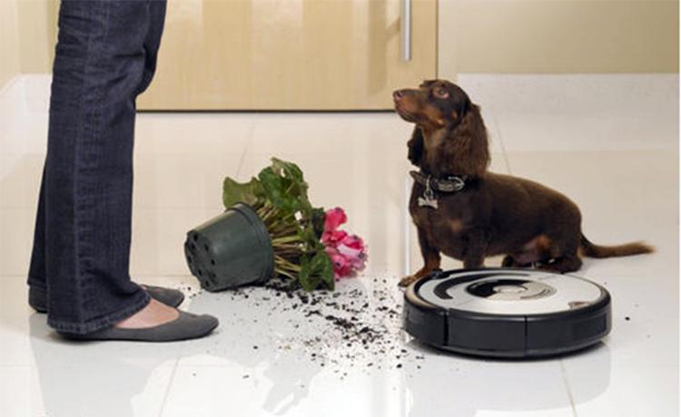 世界首例机器人自杀事件:家务工作太累机器人自焚